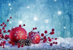 Objednávanie a distribúcia tovaru počas vianočných prázdnin